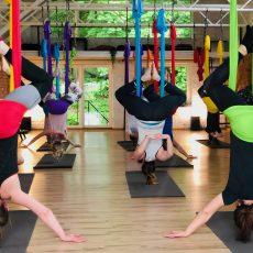 oro joga aerial yoga camiyoga 7214